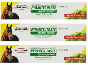 Durvet-Pyrantel-Paste-Wormer