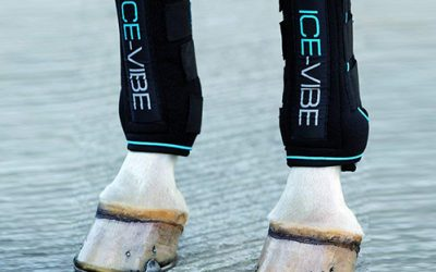 The 5 Best Ice Boots for Horses